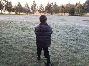 Exploring a frosty morning