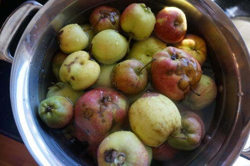 Use the ugliest apples for applesauce.