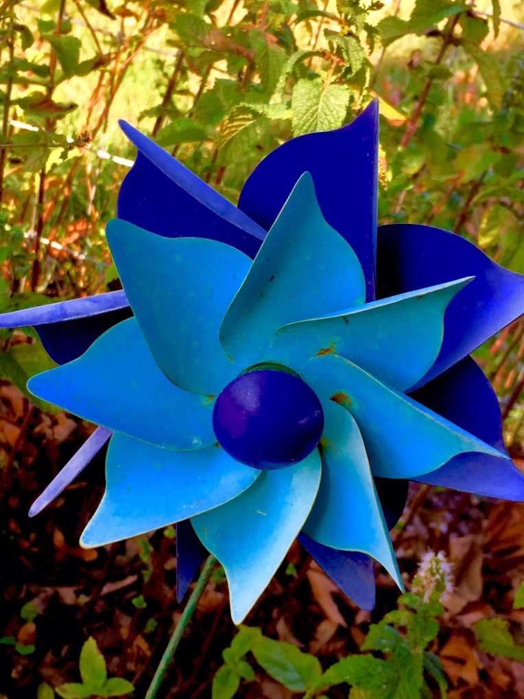 A blue pinwheel: possessing a spirit that can commune with God?