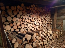 The enormous winter-ready stack of wood in the basement.